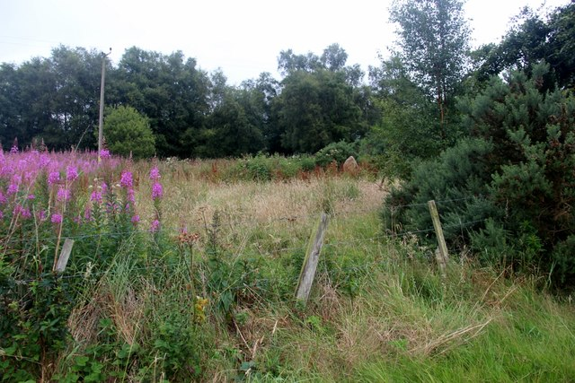 Scrubland by the railway at Dalwearie