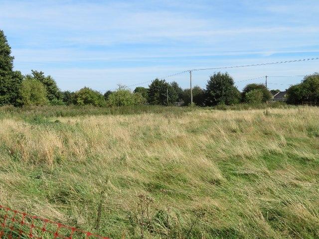Field behind Worting village