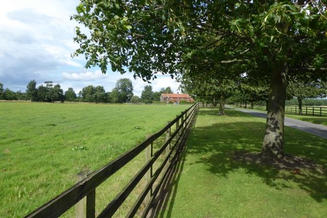 Scoreby Lane