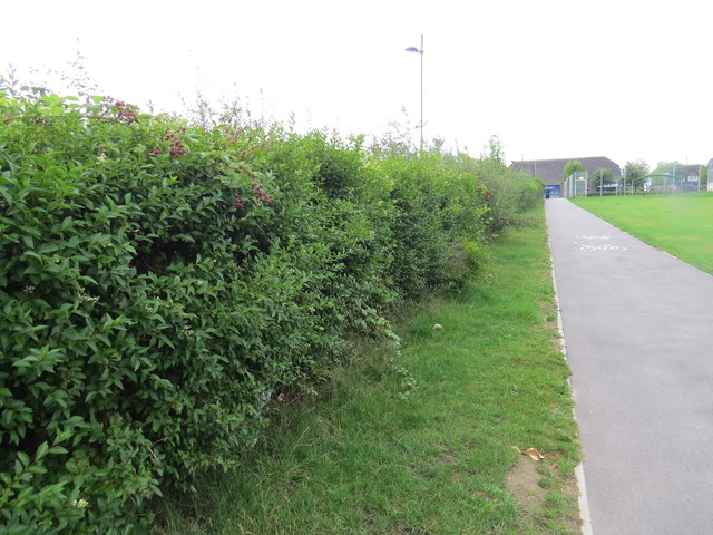 Greta Park footpath into Hedge End village