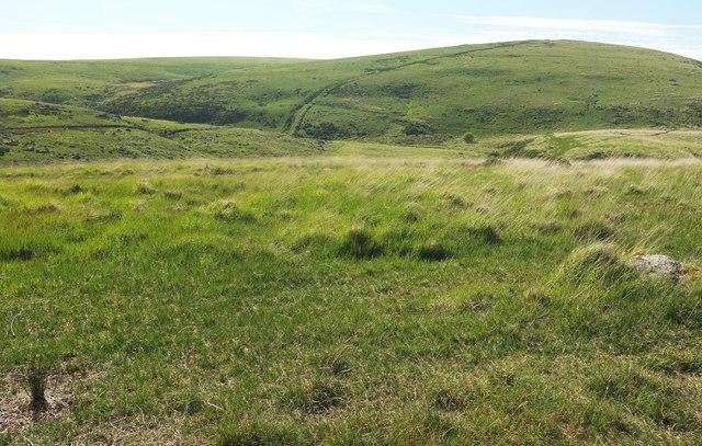 East Dart valley northwest of Stannon Tor