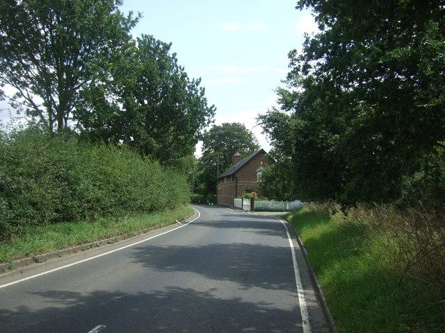 Upland Road towards Thornwood Common