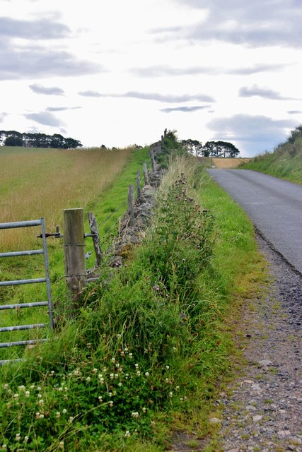 Roadside dyke near Swells