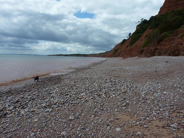 Beach and cliffs to the south & west of Budleigh Salterton