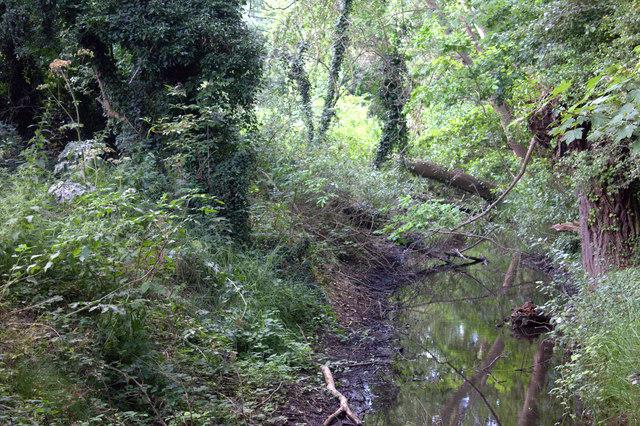 Wraybury to Horton path