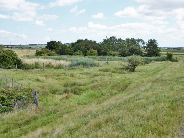Part of Bluehouse Farm Nature Reserve