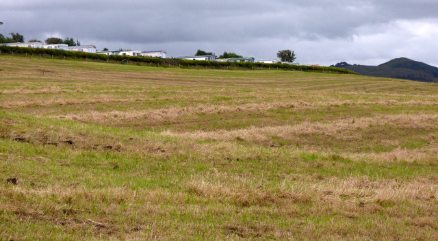 Field near Skelmorlie