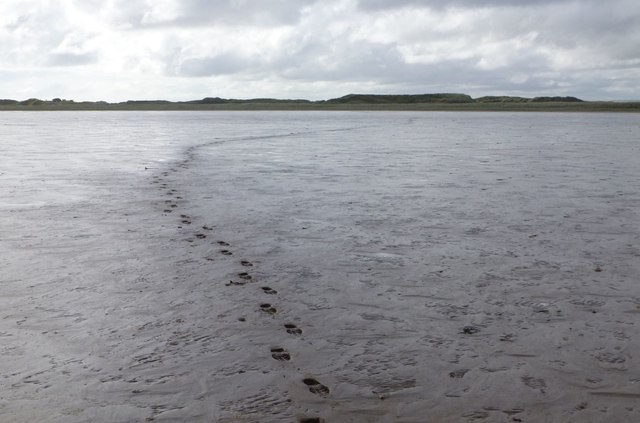 Footprints from The Snook