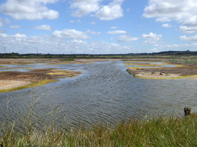 View from hide, Bluehouse Farm Nature Reserve