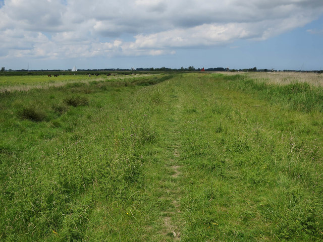 Path by the River Bure