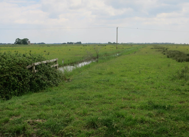 Ditch on Upton Marshes