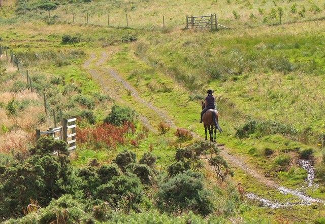 Rider in the Pentland Hills