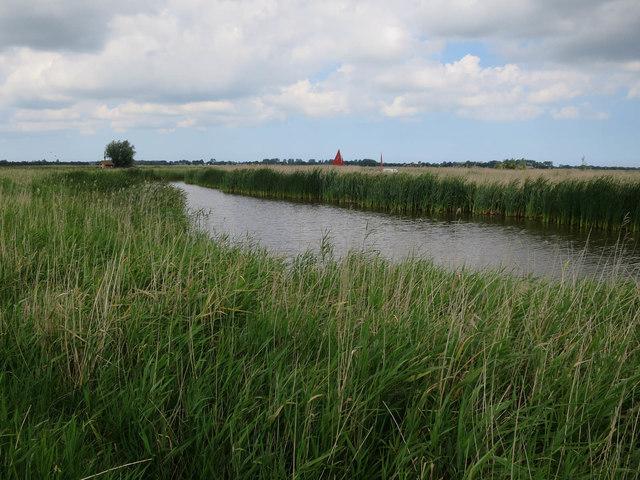 Washland by the Bure