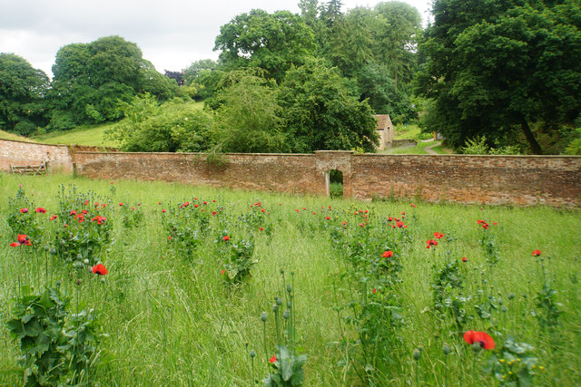 Walled garden at Fyne Court