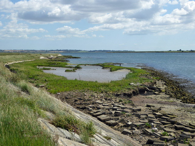 Seawall and a bit of saltings, RSPB Blue House Farm