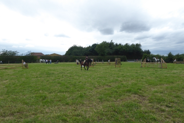 Tockwith Show: Show jumping