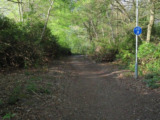 Cycle path through Queen Elizabeth Park