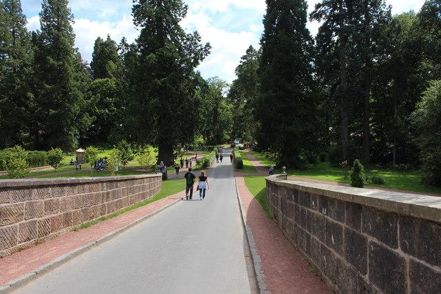 Road at Avenue Bridge, Dumfries House