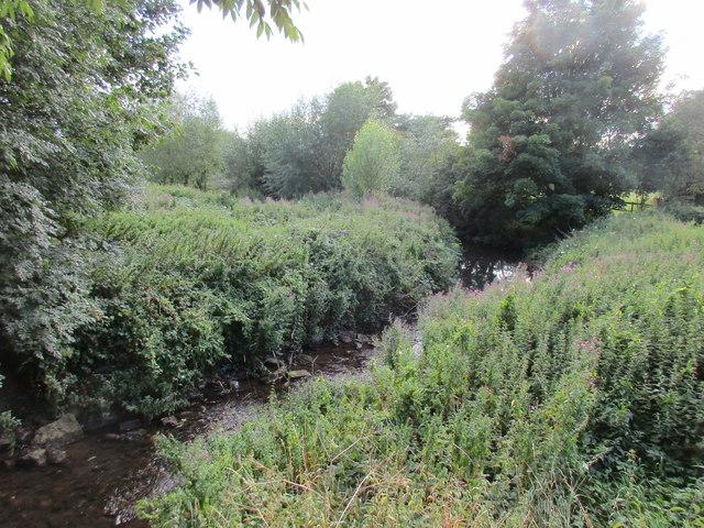 The River Dene at Wellesbourne