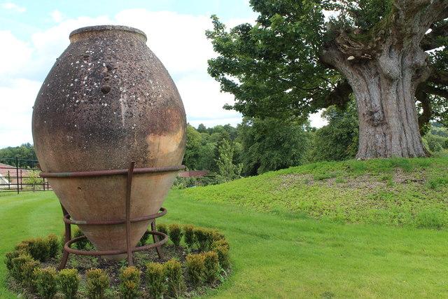 Big Pot and Old Tree, Queen Elizabeth Garden