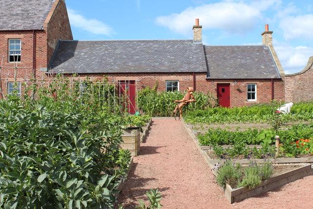 Kauffman Education Gardens (vegetable)