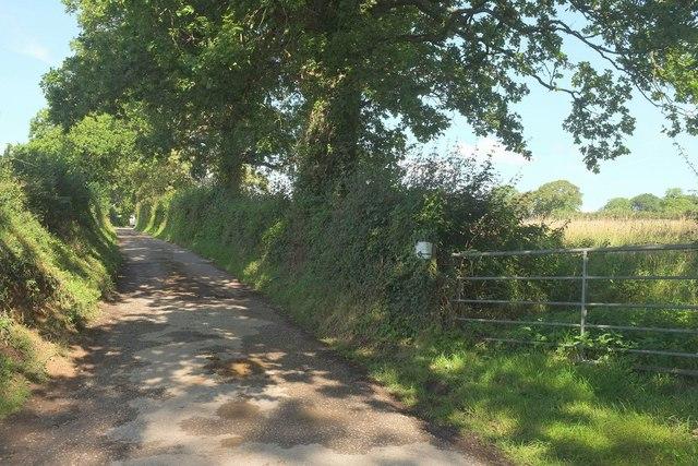 Farm lane to Canterbury House Farm