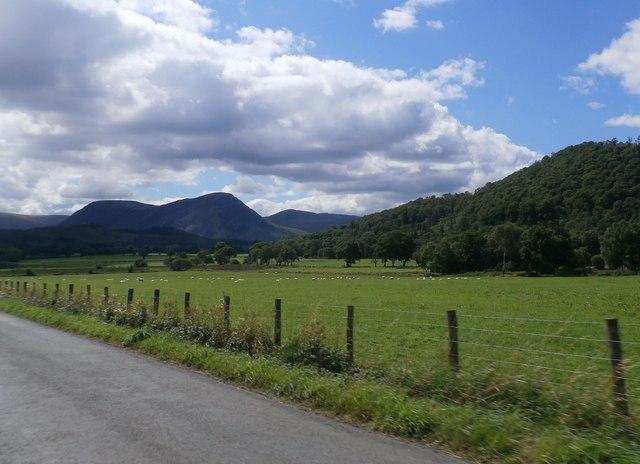 Fields near Newhouse Farm