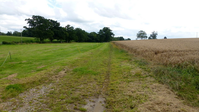 Path south from Halmore Lane