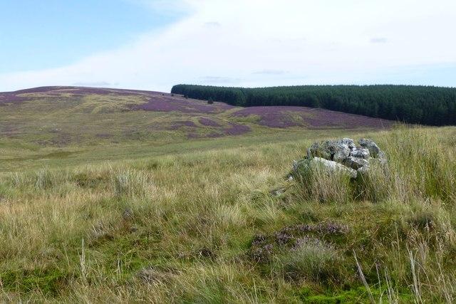 Cairn on Landshot Hill