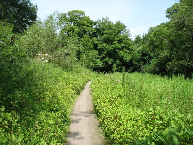 Path by the Thames and Severn Canal