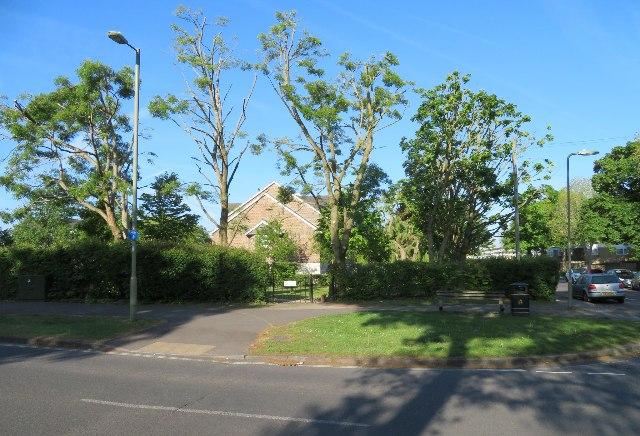 Trim trees - Aldwick Close