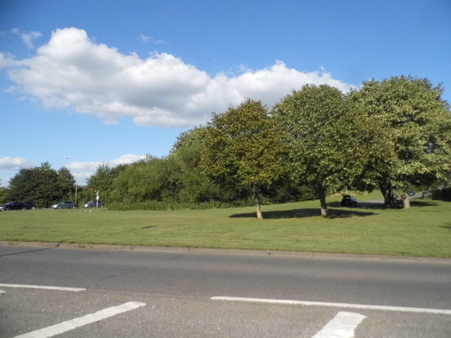 Parkland by Aylesbury Road, Thame
