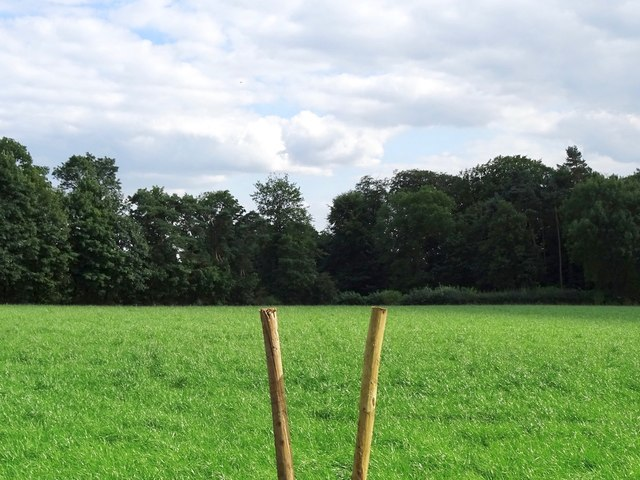 Little-used field path