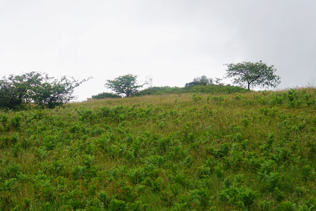 Tumulus on Lydeard Hill