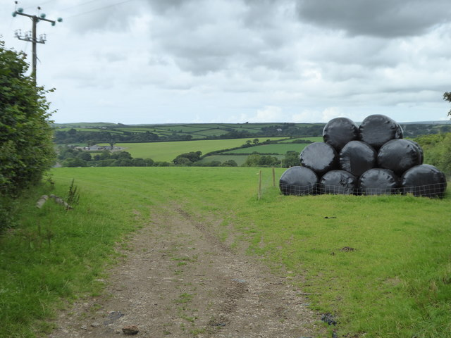 Silage bales in a field at Tresquare