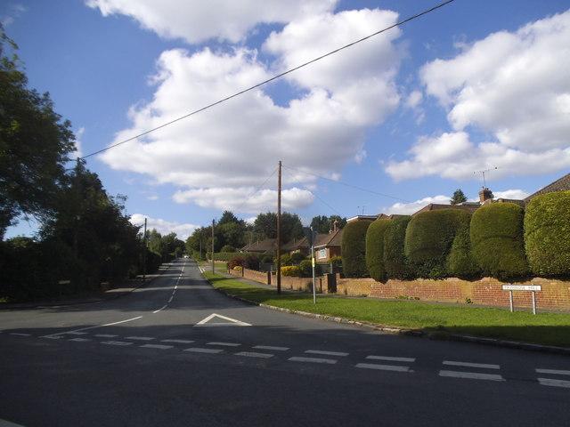 Primrose Hill, Widmer End