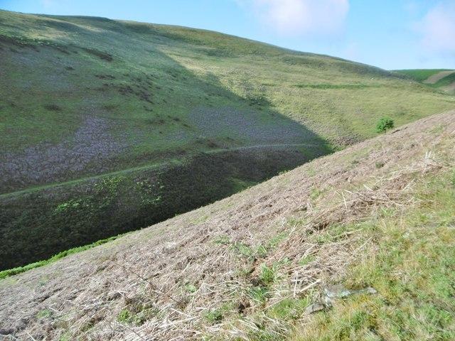Llanarmon Dyffryn Ceiriog, valley
