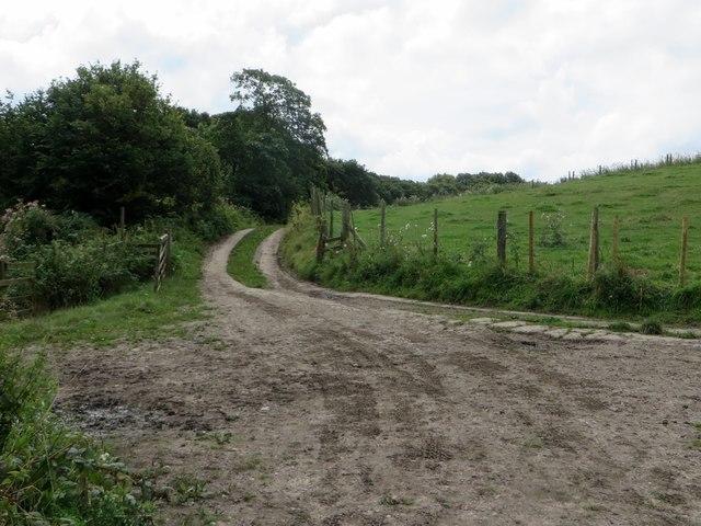 Farm track leading to Lees Lane
