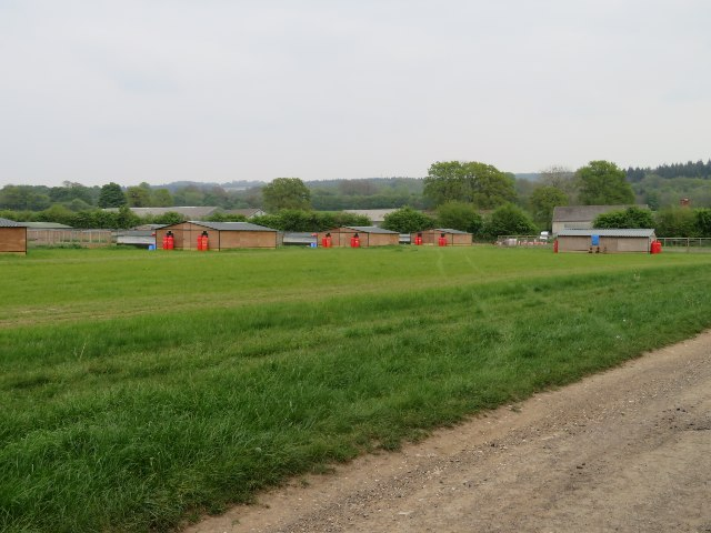Pheasant breeding pens