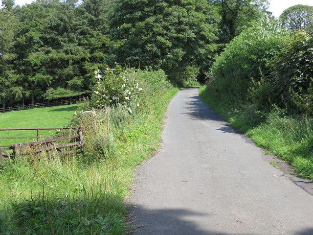 Barse Beck Lane heading eastward