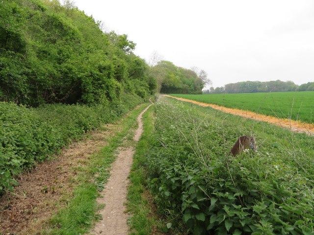 Path by Little Stubbs Copse
