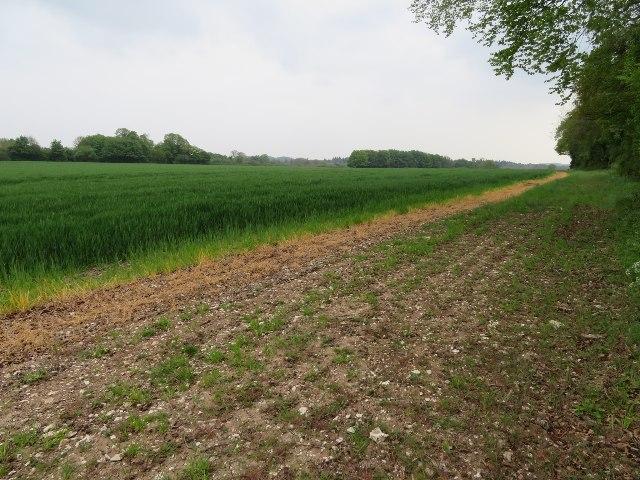 Field northeast of Southwood Farm