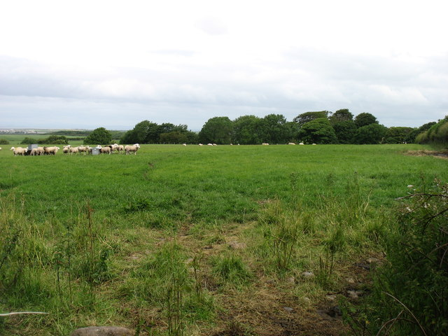 Farmland north of Allerby