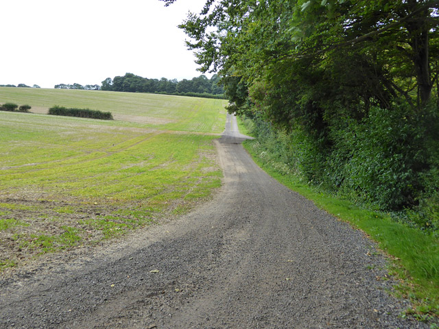 Farm track, Litlington
