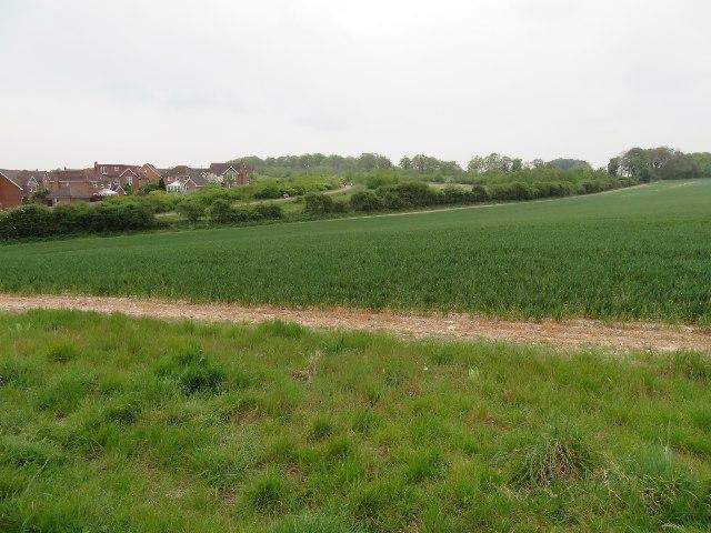 Edge of Basingstoke