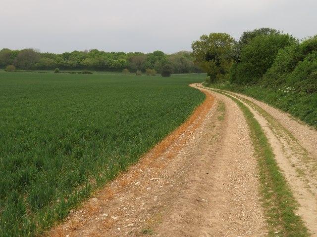 Farm track skirting Great Wildcroft Field