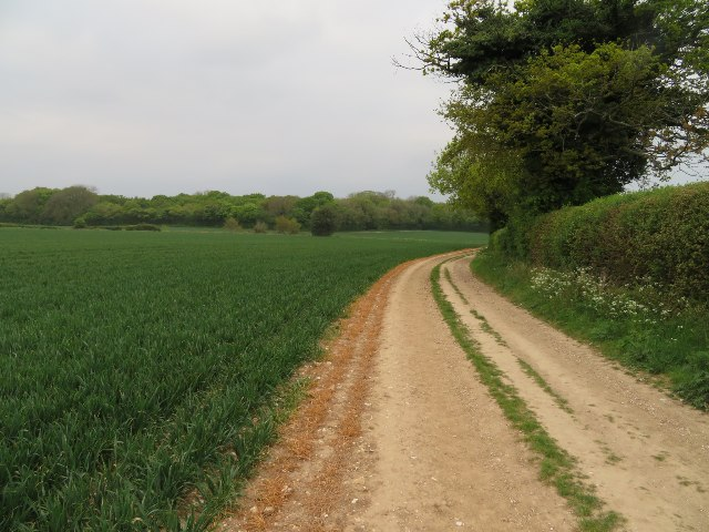 Farm track skirting Great Wildcroft Field