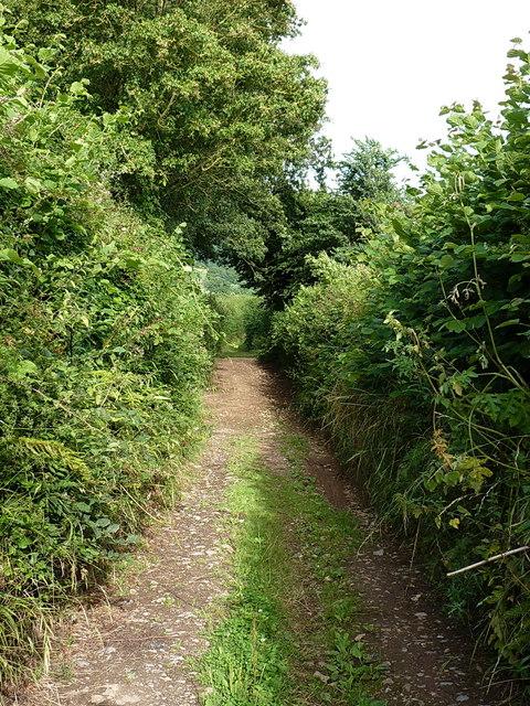 Buckton Lane east of Buckton Farm