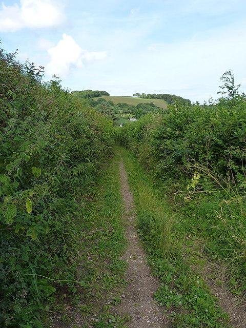 Buckton Lane near Harecombe Farm