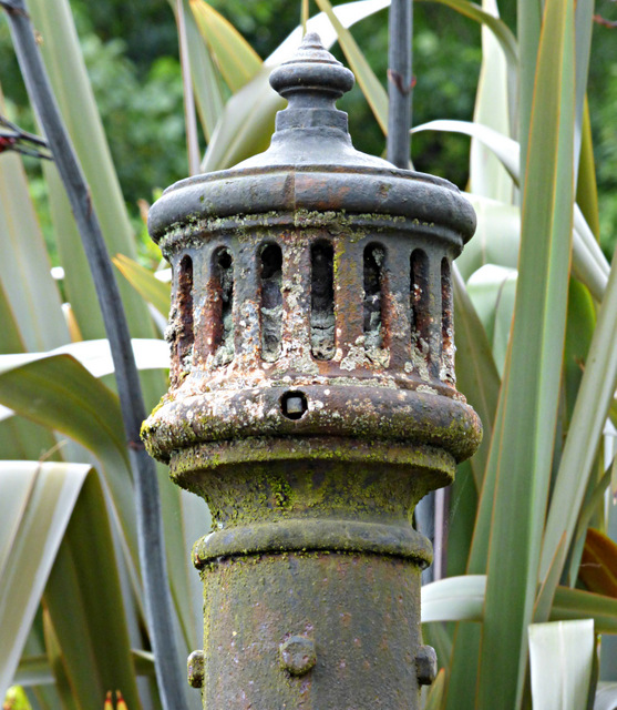 Sewer vent pipe